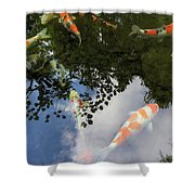 Koi Pond Reflection Shower Curtain