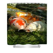 Koi Ripples Shower Curtain