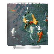 Koi Symphony 1 Stylized Shower Curtain