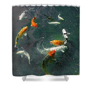 Koi Symphony 2 Stylized Shower Curtain