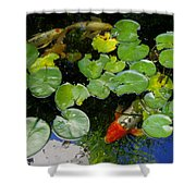 Koi With Lily Pads D Shower Curtain
