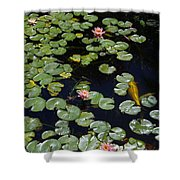 Koi With Lily Pads E Shower Curtain