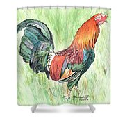 Kokee Rooster Shower Curtain