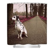 Kokkie On The Autumn Alley Of Rhoon Shower Curtain