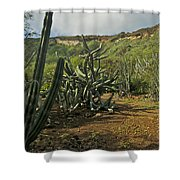 Koko Caldera Shower Curtain