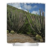 Koko Crater Cacti Shower Curtain