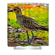 Kolea Abstracted Shower Curtain