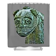 Komainu03 Shower Curtain