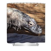 Komodo Kountry Shower Curtain