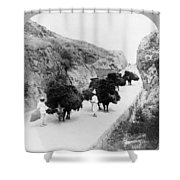 Korea: Farmers, C1904 Shower Curtain