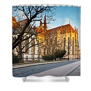 kosice 'VI Shower Curtain