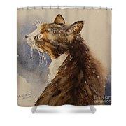 Kotora - My Parents Cat Shower Curtain