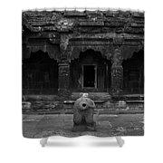 Krishna Devi Temple Shower Curtain