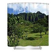 Kualoa Orchard Shower Curtain
