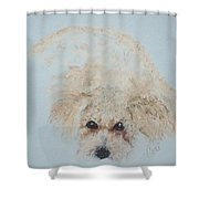 Kuku Shower Curtain