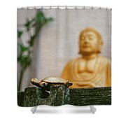 Kura-kura Shower Curtain