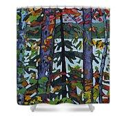 Kushog Colours Shower Curtain
