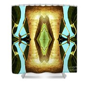 KV5 Shower Curtain by Writermore Arts