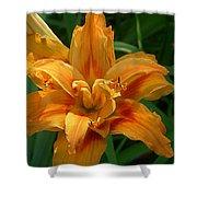 Kwanzaa Lily Shower Curtain