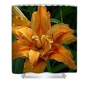 Kwanzaa Lily Watercolor Shower Curtain