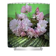 Kwanzan Shower Curtain