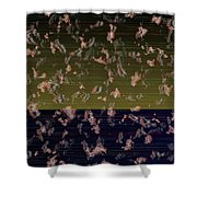 L18-128 Shower Curtain