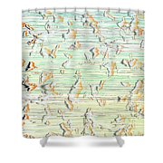 L18-205 Shower Curtain