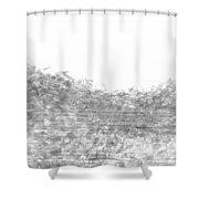 L22-26 Shower Curtain