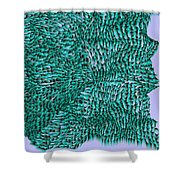 L9-104-0-183-160-193-192-248-3x3-1500x1500 Shower Curtain