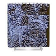 L9-24-197-210-255-58-45-0-3x4-1500x2000 Shower Curtain