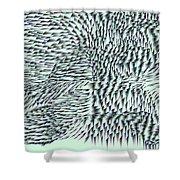 L9-34-216-255-251-220-255-232-4x2-2000x1000 Shower Curtain