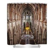 La Basilica Quito Shower Curtain