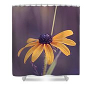 La Bella Shower Curtain