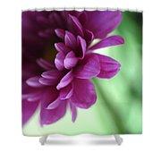 La Fleur De L' Amour Shower Curtain