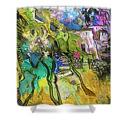 La Provence 02 Shower Curtain