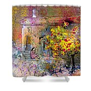 La Provence 13 Shower Curtain