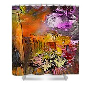 La Provence 14 Shower Curtain
