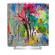 La Provence 17 Shower Curtain
