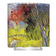 La Provence 26 Shower Curtain