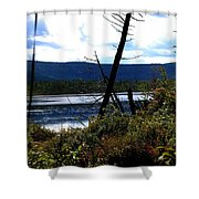 Labrador Pond Shower Curtain