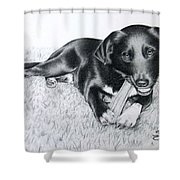 Labrador Samy Shower Curtain
