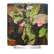 Lace Cap 1 Shower Curtain