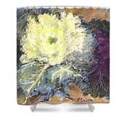 Lace Curtin Cabbage Shower Curtain