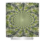 Lacey Kaleidoscope Shower Curtain