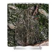Lacey Leaf Shower Curtain