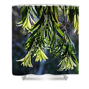 Lacey Leaves Shower Curtain