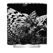 Lacy Black And White Shower Curtain
