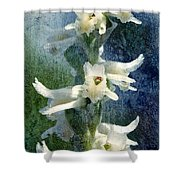 Ladies-tresses Orchid Shower Curtain