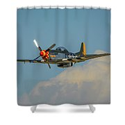 Lady Allice 2 Shower Curtain