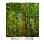 Lady And The Tree Shower Curtain